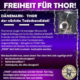 Repeal the Breed Ban in Denmark Petition